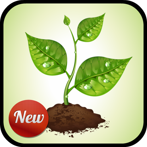 Nature Sounds To Sleep To file APK Free for PC, smart TV Download