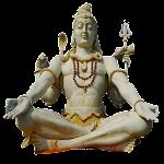 Yoga Mudras 3.0