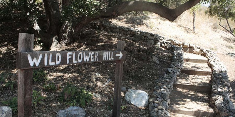 11 Free Earth Day Events in Los Angeles #EarthDayLA - Wildflower Hill
