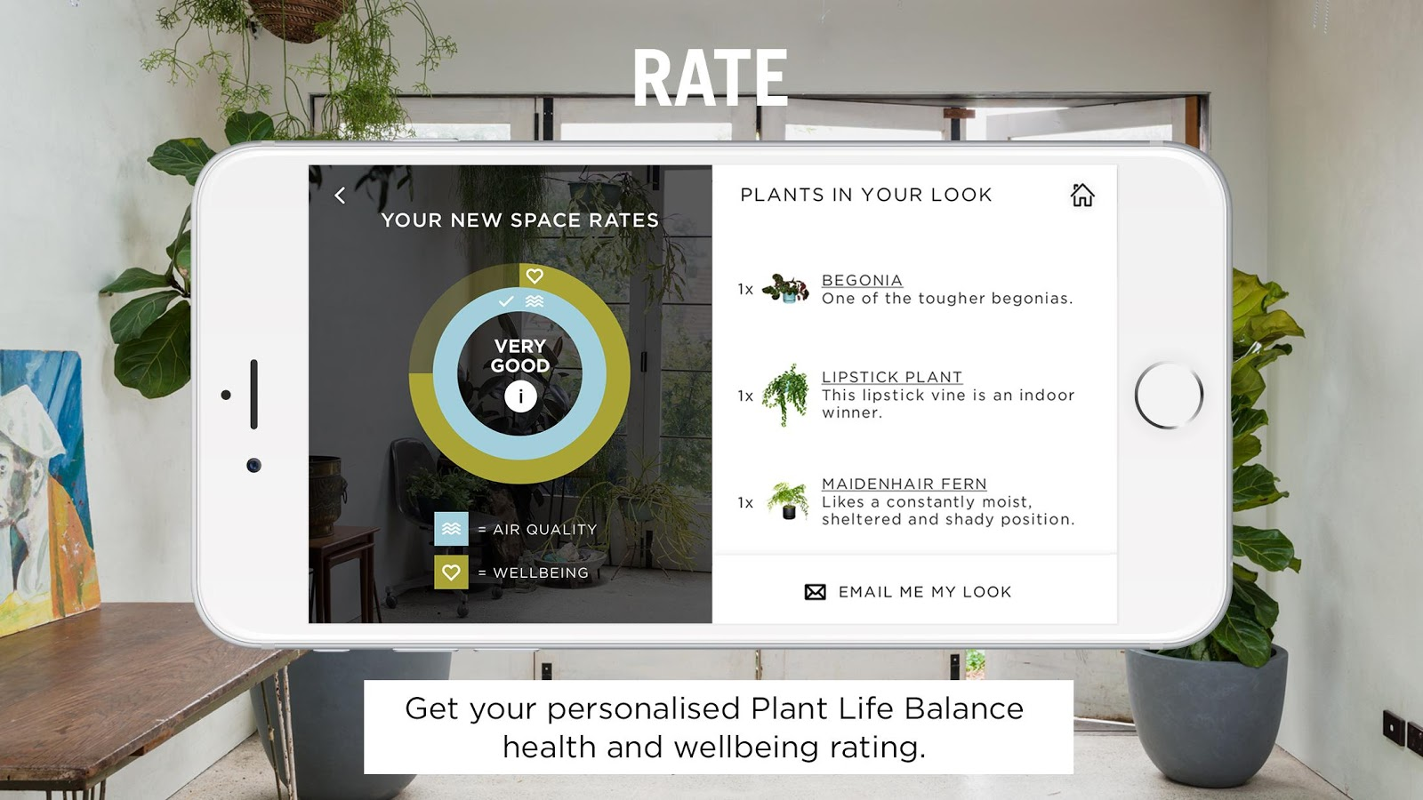 Plant Life Balance- screenshot
