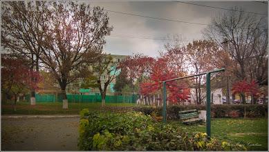Photo: Calea Victoriei, Mr.2 - alee de acces la gradinita - 2017.10.22