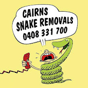 Cairns Snakes