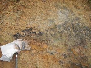 Photo: Právě nalezená sloj dendritického uhlí (13.1. 2014).