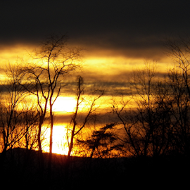 Dark Night Coming by Leah Zisserson - Landscapes Sunsets & Sunrises ( sky, sunset, weather, yellow, black, virginia,  )