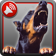 Dog Barking Sounds - Apps on Google Play on dog at door, dog chocolate, dog sounds, dog bites, dog play, dog growl, dog ball, dog roll over, dog woof woof, dog clipart, dog brush, dog attack, dog bone, dog behavior, dog digging, dog barking control, dog come, dog sitting, dog howl, dog scent marking,