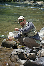 Photo: Mad River Outfitters Montana Trip - Cutthroat Trout