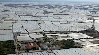 El abandono de plásticos en el campo es uno de los principales retos de la agricultura almeriense.