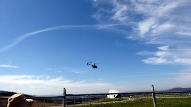 Photo: Helicopter lands at Margaret Whitlam Pavillion Arboretum
