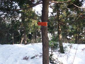 奥野山(361.7m三角点)
