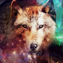 Gray Wolf Puzzle icon