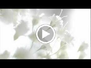 Video: Antonio Vivaldi  Scanderbeg (RV 732) - II X Aria [Ormondo]  S'a voi penso, o luci belle -