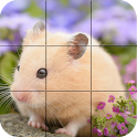 Puzzle - Cute Hamsters icon