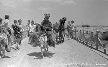 Photo: На Каракумском канале. 1976 год