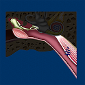 Middle Ear ID icon