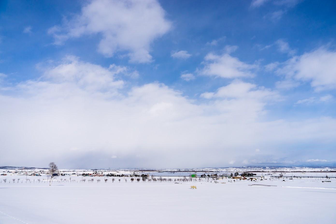 ひまわりの里に広がる真っ白な雪原