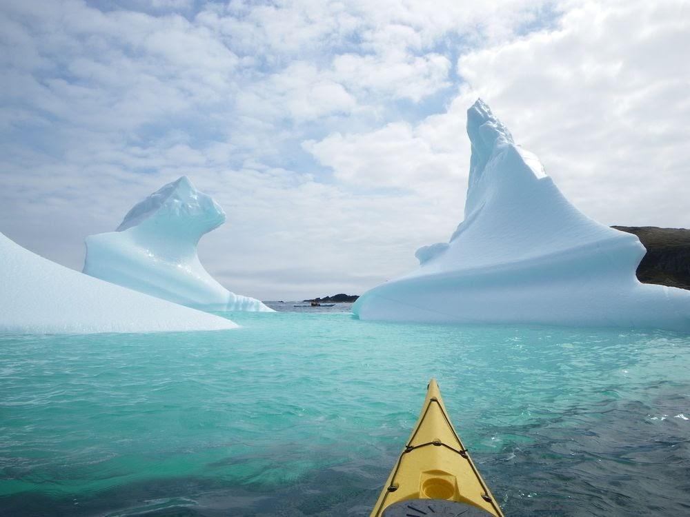 Iceberg Alley, o visitante inesperado