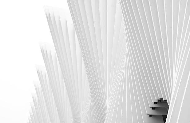 Calatrava  di Alberto_Caselli