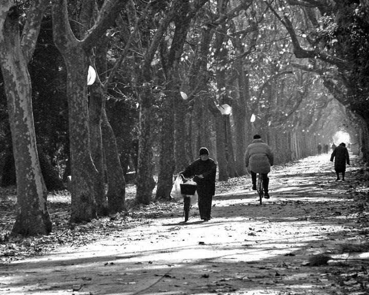 Anziani a passeggio di iLLu