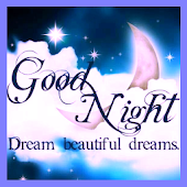 Good Night Sweet Dream Sticker