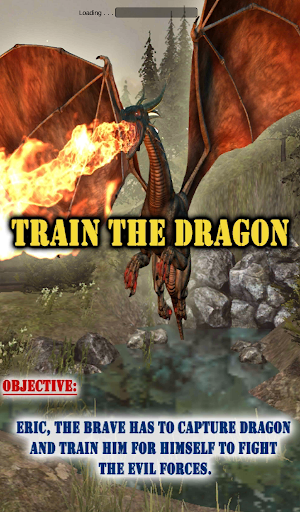 ドラゴンを訓練