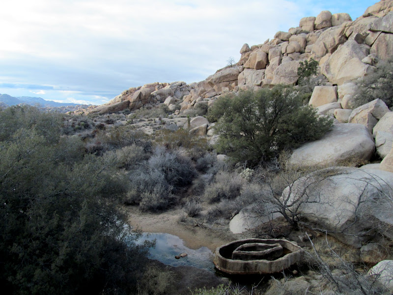 Photo: Water trough below Barker Dam