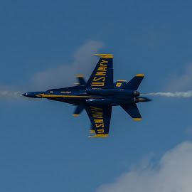 Rolling Pass by Ron Malec - Transportation Airplanes ( airshow, mcas beaufort, blue angels )