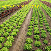 Agriculture Farming Tips