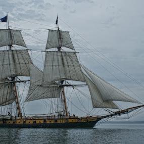 Niagara sailing ahead by Tracy Riedel-Dorsch - Transportation Boats