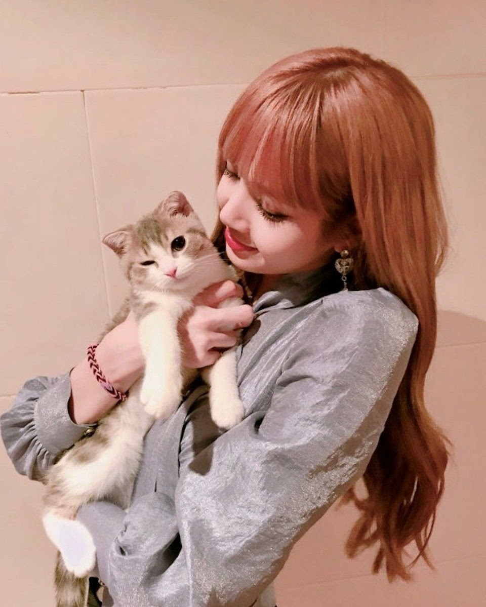 blackpink lisa cat leo lalalalisa_m ig 2