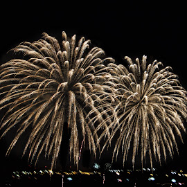 by Margie Troyer - Public Holidays July 4th