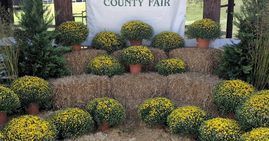 Anne Arundel County Fair 2016