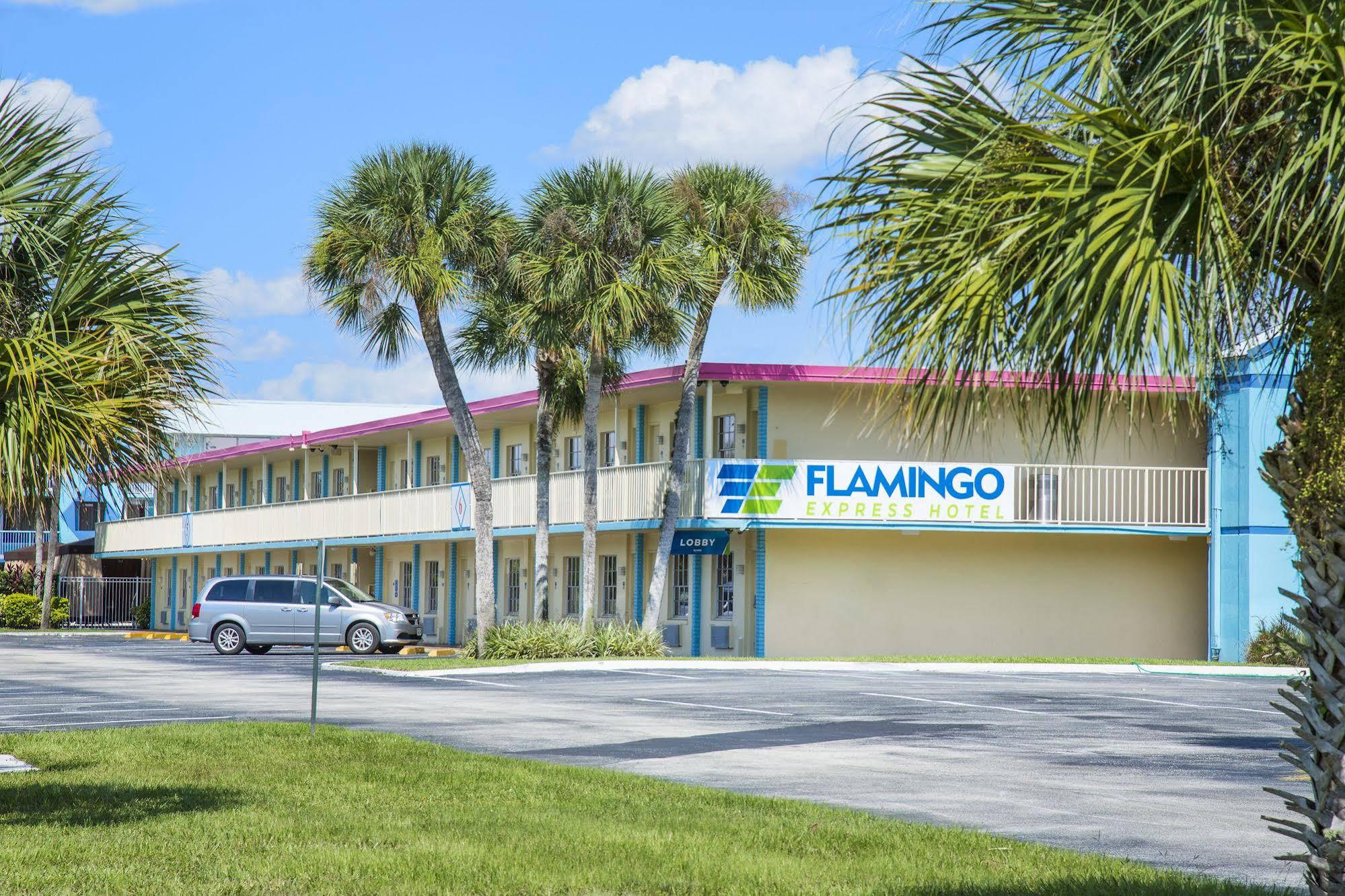 Flamingo Express