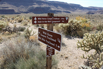 """Photo: The place is well maintained, but an absolute """"don't fall on the cacti around"""" area"""