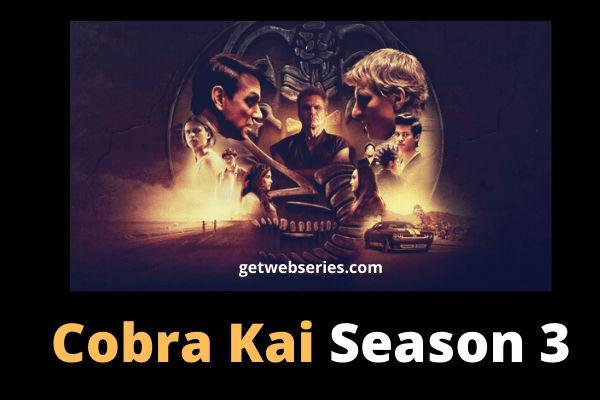 Cobra Kai Season 3 best english web series to watch