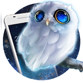 Cute Owl Theme: Can't sleep night