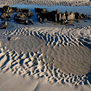 Tidal Tracks p.e. Pixoto.jpg