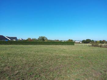 terrain à Montilliers (49)