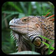 Tile Puzzles · Reptiles