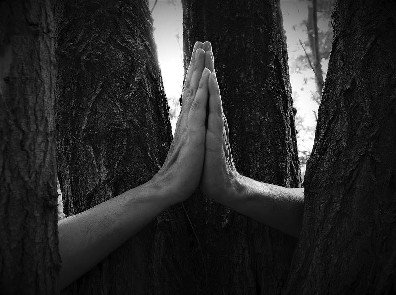 Un incontro di...preghiera di Daimon