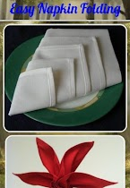 Easy Napkin Folding - screenshot thumbnail 02