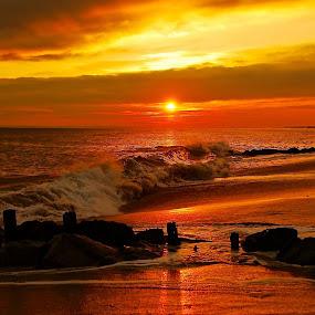 golden sunset by Argirios Kostaras - Nature Up Close Water (  )