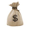 Real Money icon