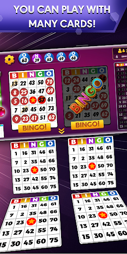 Bingo - Offline Free Bingo Games 1.8.3 screenshots 1