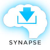 Vocabulary Synapse Free