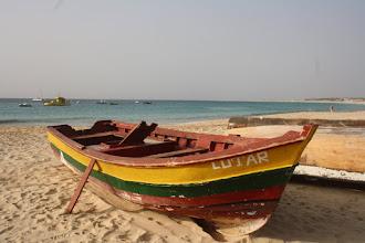 Photo: Turistbåtar och fiskebåtar.