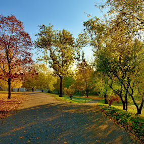 Grébovka by Michal Kostka - Uncategorized All Uncategorized ( nature, autumn, landscaoe, praha, landscape, prague )