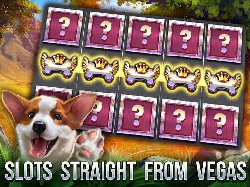 Cats Slot Machines 2.8.2448 screenshots 9