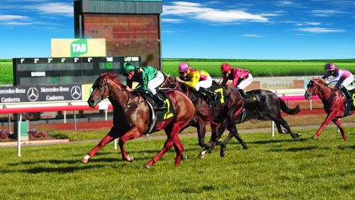 Horse Racing  : Derby Horse Racing game filehippodl screenshot 12