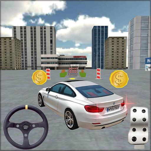 City Car Driving 3D