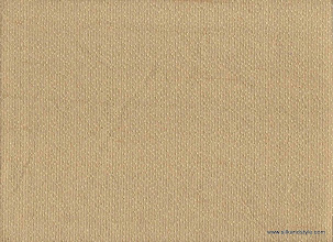 Photo: 19 Nirvana - Toasted Almond   100% Silk Jacquard